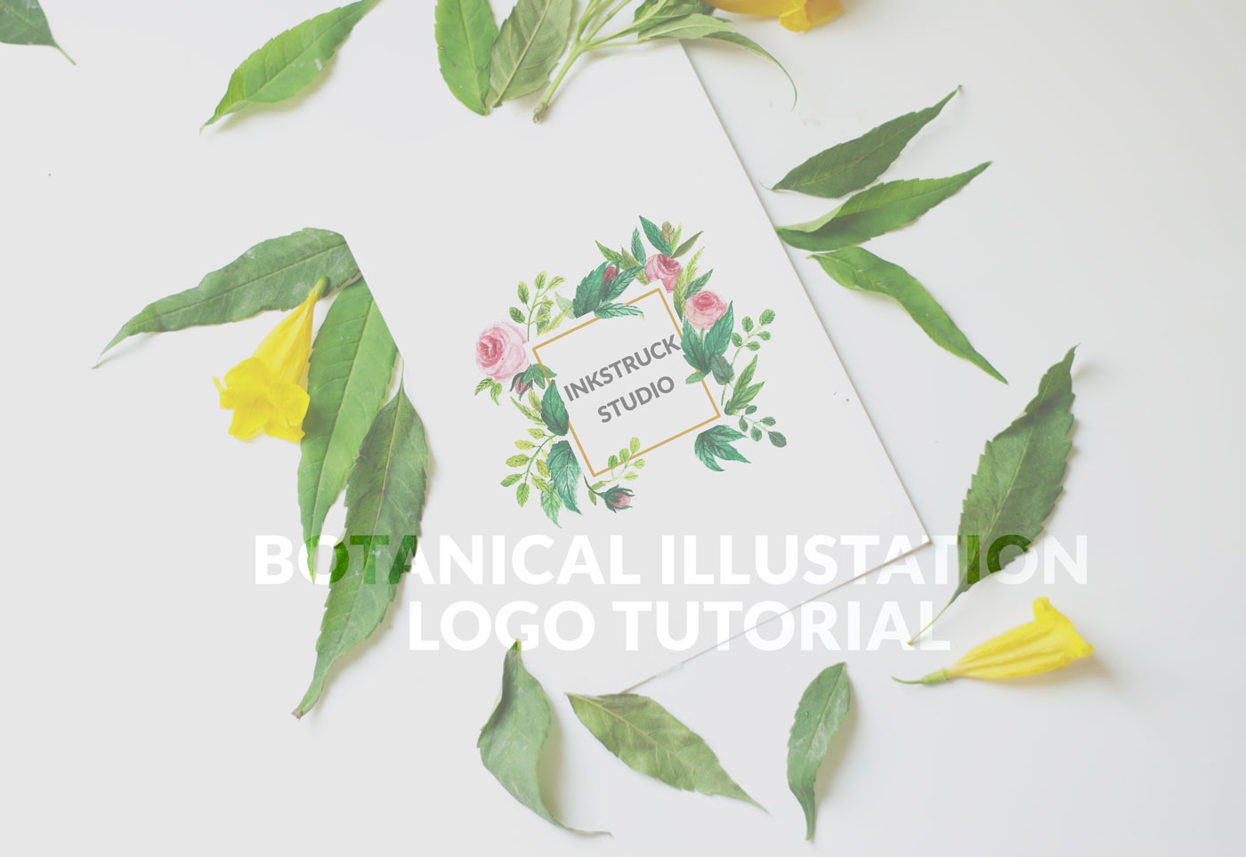 botanical illustration logo